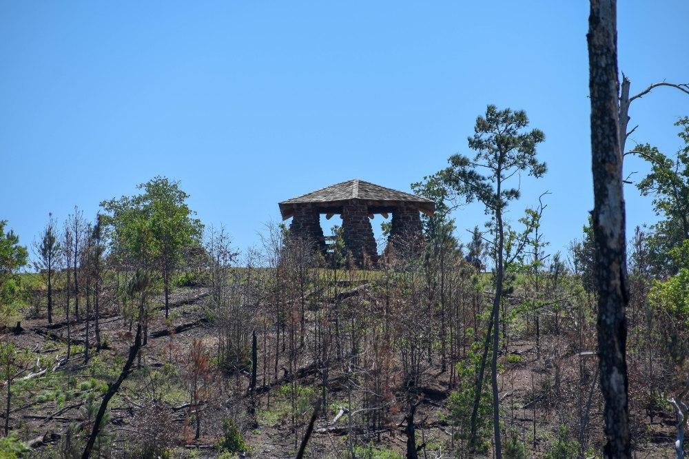 Bastrop State Park-26