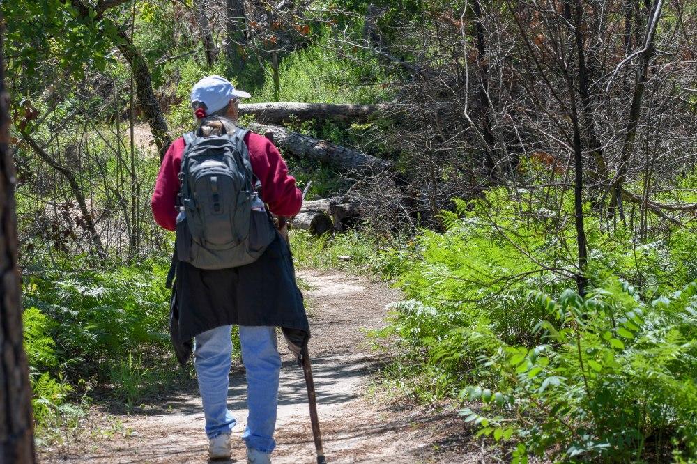 Bastrop State Park-21